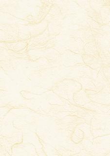 Strohseide 50 x 70 cm chamoi