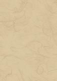 Straw Silk Paper 50 x 70 cm beig