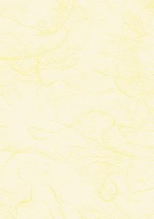 Strohseide 50 x 70 cm vanill