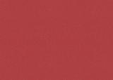 Coloured Cardstock 50 x 70 cm tulip re