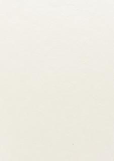 Mulberry Paper 55 x 40 cm perlwei