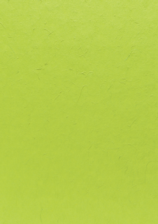 Mulberry Paper 55 x 40 cm grass green