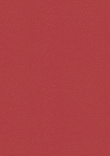 Coloured Cardstock A4 tulip red