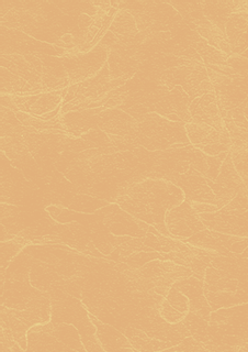 Strohseide 50 x 70 cm mang