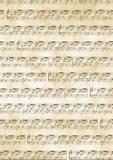 """Transparent Paper """"Notes"""" A4 (21 x 31 cm incl. coding strip) antique brow"""