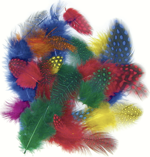 Guineafowl Feathers 4 - 6 cm 4 assorted colours (yellow, red, blue, green