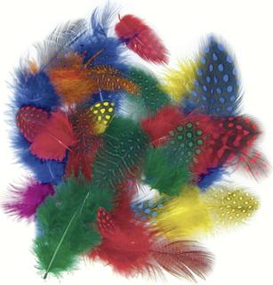 Perlhuhnfedern 4 - 6 cm 4 Farben sortiert (gelb, rot, blau, grün