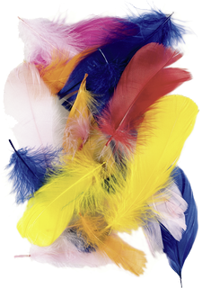 Goose Feathers 7 - 8 cm yellow, orange, red, rose, pink, blue