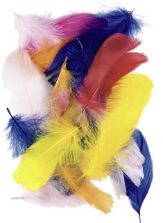 Gänsefedern 7 - 8 cm gelb, orange, rot, rosa, pink, bla