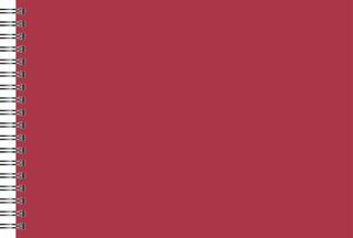 Scrapbook- und Kreativalbum 24 x 34 cm rot/champagner