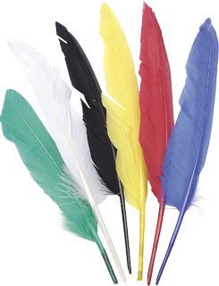 Indian Feathers 15 - 22 cm assorted colours