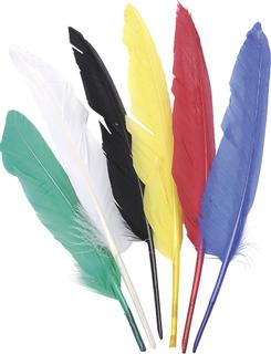 Indianerfedern 15 - 22 cm bunt sortier
