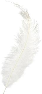 Feder ca. 35 cm weiß