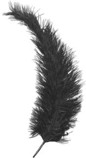 Feder ca. 35 cm schwar